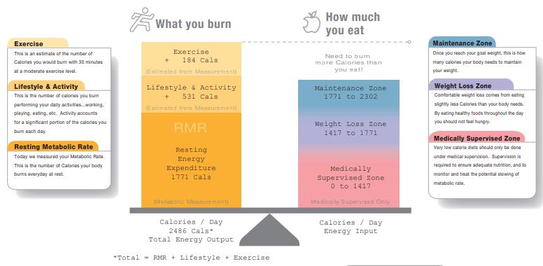 Amount of food energy body you need